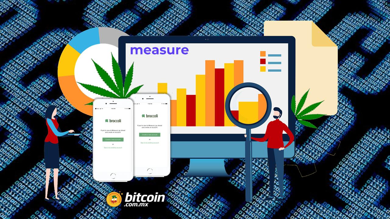 alianza-para-desarrollar-investigación-de-cannabis-basada-en-blockchain